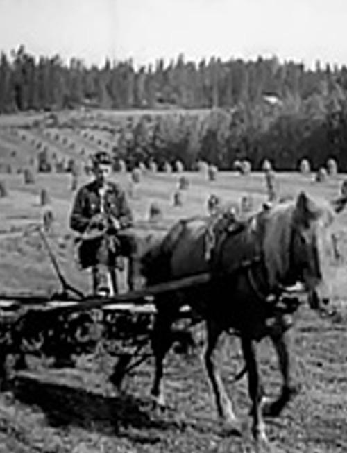 Kesko 75 -elokuva